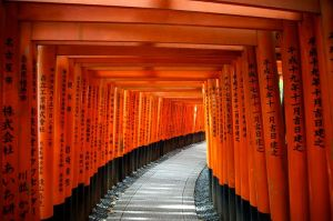 Torii_gates—Fushimi_Inari_Shrine_(9977683204)
